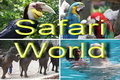 Safari World Tour